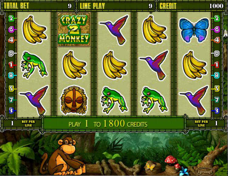 Играть в Crazy Monkey 2